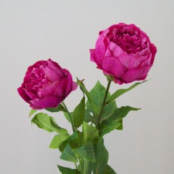 Double Peony Flowers Mid Pink - P143 L4