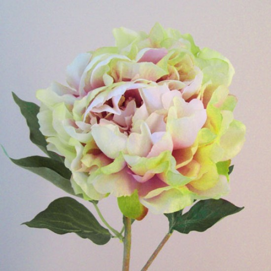 Artificial Peony Flowers Pink Green - P011 K1