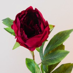 Artificial Peony Flowers Red - P095 N4