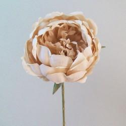 Romance Peony Flowers Nude - P220