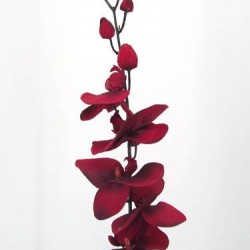 Artificial Phalaenopsis Orchid Blood Red - J015 H1