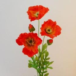 Orange Poppies - P026 AA2