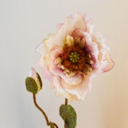 Poppies Dusky Pink - P264 K4