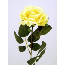 Premium Rose Soft Yellow - R032 L4