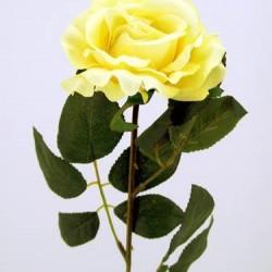 Premium Rose Soft Yellow - R032 L4