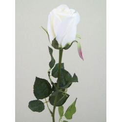 Prize Rose Bud Cream - R156A O4