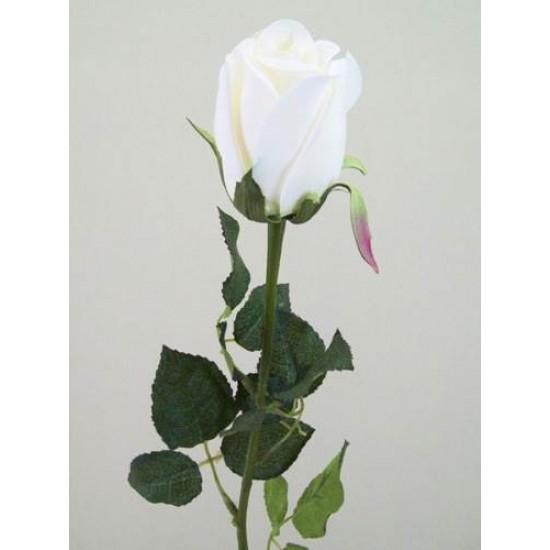 Prize Rose Bud Cream - R156A P4