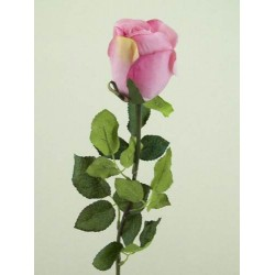 Prize Rose Bud Mid Pink - R156b O4