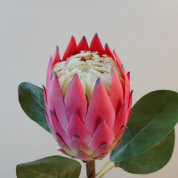Artificial King Protea Pink - P085 K3