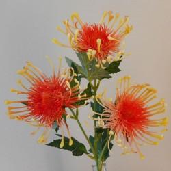Artificial Leucospermum Protea Spray Orange - P110 P2