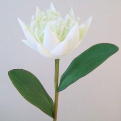 Artificial Protea White - P046 BX1