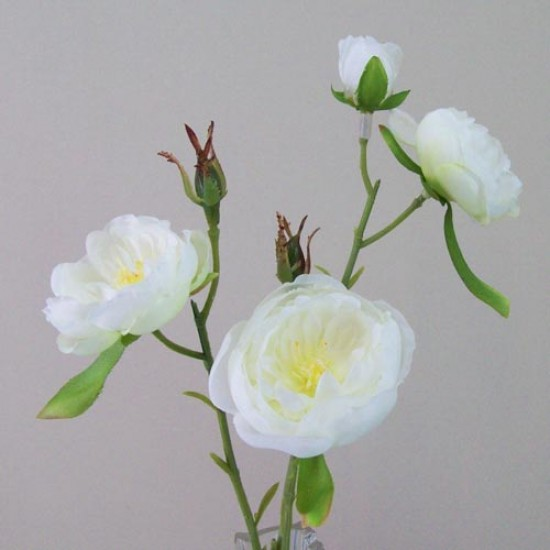 Artificial Ranunculus Flowers Cream Open - R426 O2