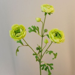 Carnival Ranunculus Lime Green Artificial Flowers - R907 O2