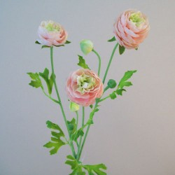 Silk Ranunculus Flowers Pink and Green - R659 N4