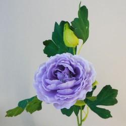 Ranunculus Lilac - R758 N2
