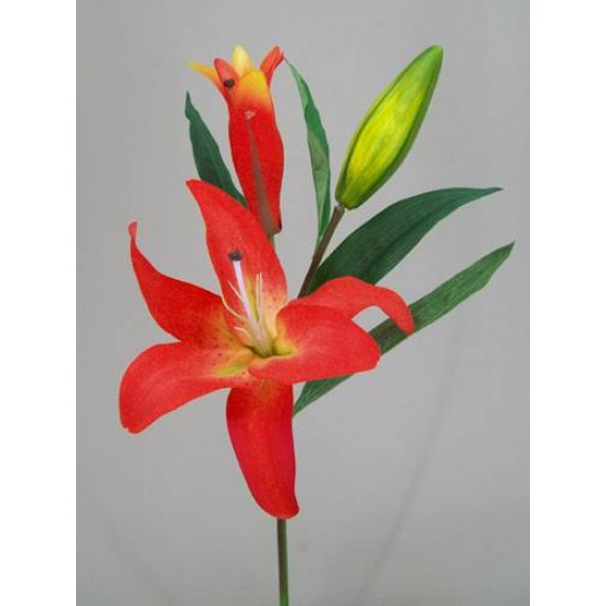 Real Touch Casablanca Lily Orange (Short Stem) - L028 KK1