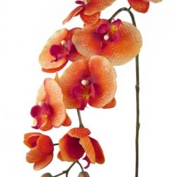 Real Touch Phalaenopsis Orchid Coral - O023 K1