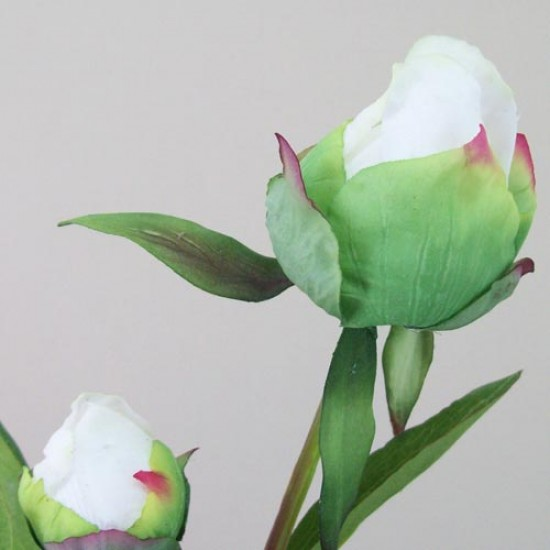 Artificial Peony Buds Large Pink - P153 L2
