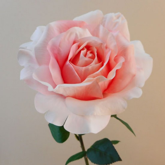 Anastasia Artificial Rose Two Tone Pink - R936 R1