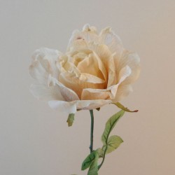Antique Rose Cream | Faux Dried Flowers - R259 M4