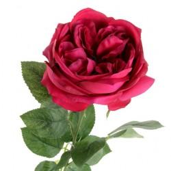 Artificial Cabbage Rose Cerise Pink 60cm - R777 N2