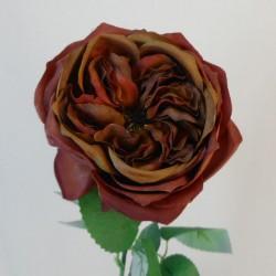 Artificial Cabbage Rose Chestnut Brown 60cm - R779 O2
