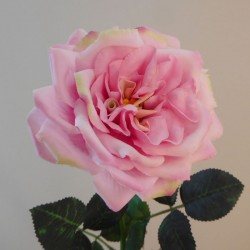 Artificial Cabbage Rose Pink Duchesse de Brabant - R701 LL2