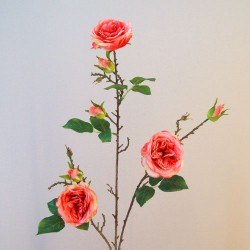 Artificial Cabbage Roses Branch Coral - R801