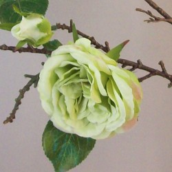 Artificial Cabbage Roses Branch Green - R803 Q1