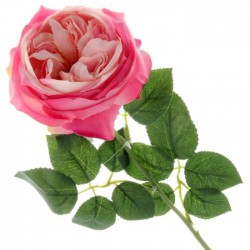 Artificial Cabbage Rose Bright Pink 60cm - R765 O4