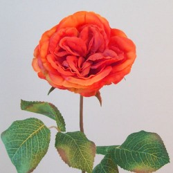 Artificial Cabbage Roses Orange - R712 N3