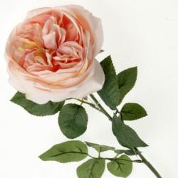Artificial Cabbage Rose Peach 60cm - R778 O4