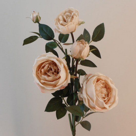Artificial Cabbage Roses Spray Cappuccino - R776 AA1
