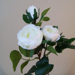 Artificial Old Roses Spray Ivory (Short Stem) - R605 R4