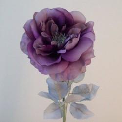 Blown Roses Aubergine Purple - R866 Q2