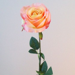 Artificial Roses 'Peace' Peach Yellow - R688