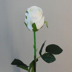 Belgravia Rose Buds Cream - R406 P3