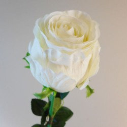 Belgravia Rose Cream - R033 L3