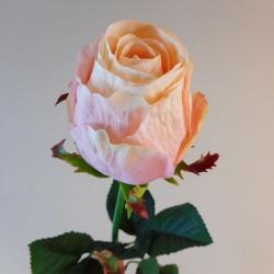 Belgravia Rose Peach Pink - R219 M3