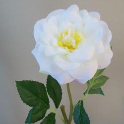 Diana Rose Ivory - R848 M3