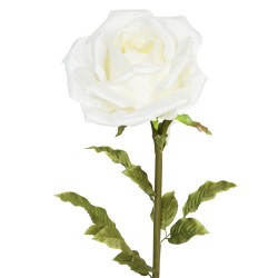 Giant Silk Roses Cream | VM Display Prop - R550 N4