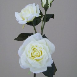 Old Roses Spray Cream - R141 O2