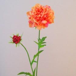 Silk Scabious Flowers Candy Crush Peach Melba   Artificial Scabiosa - S003 KK1