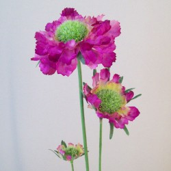 Silk Scabious Flowers Dark Pink | Artificial Scabiosa - S089 Q2