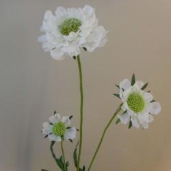 Silk Scabious Flowers White | Artificial Scabiosa - S134 R2