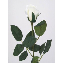 Artificial Bud Roses Cream Ivory - R008 M4