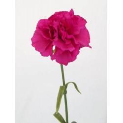 Silk Carnation Cerise Pink - C023 A4