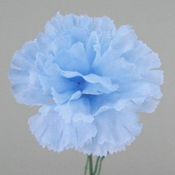 Silk Carnations Pale Blue - C001g A4