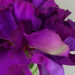 Silk Carnation Purple - C009 B4