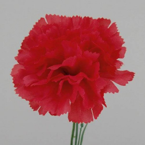 Silk Carnations Red - C001e A4